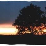 Sonnenuntergang, erholsamer Urlaub, Gunzenhausen, Urlaub Natur